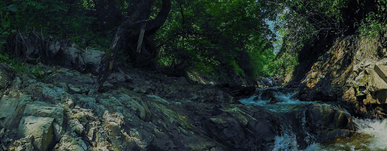 okolica-potok-górski